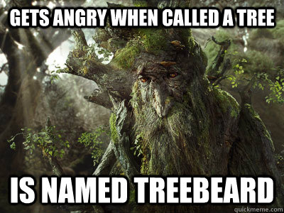 Treebeard. He's not a tree, he's an Ent, don't you know.